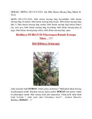 MURAH.!HP/WA 0813-2711-9234, Jual Bibit Durian Musang King Medan H. Tovix