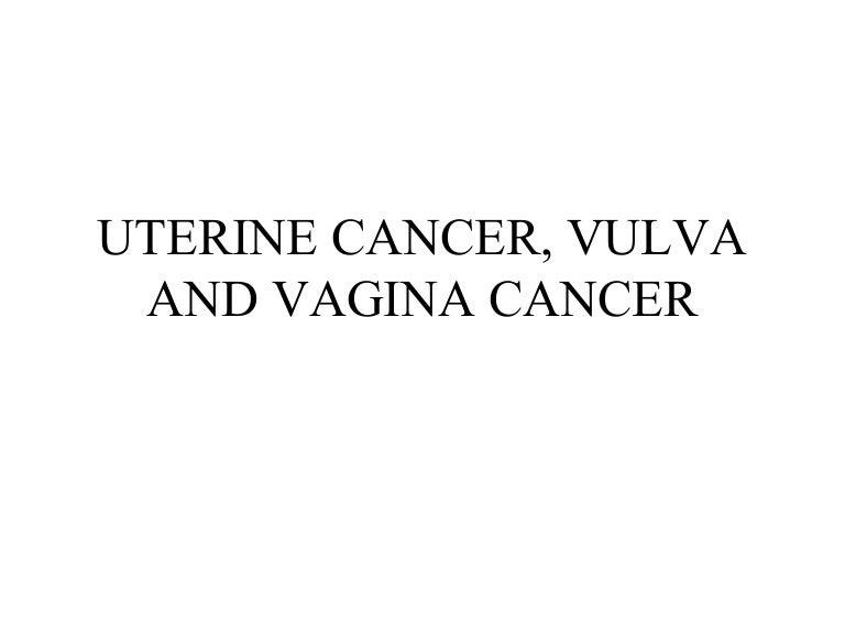 Tour of the vulva
