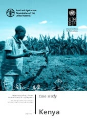 Kenya Case Study - FAO-UNDP Integrating Agriculture in National Adaptation Plans programme (NAP-Ag)