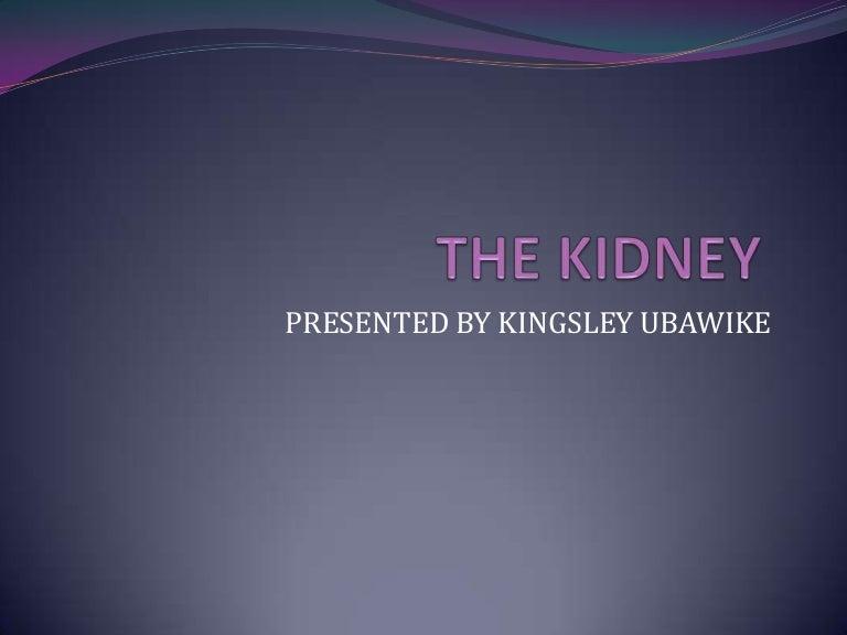 Kidney power point presentation toneelgroepblik Choice Image