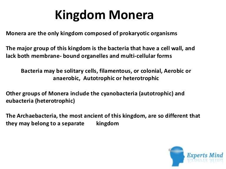 Kingdommonera 130412060546 Phpapp01 Thumbnail 4gcb1365748098