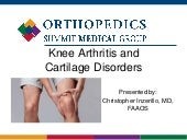 Understanding Knee Arthritis and Cartilage Disorders - Maurice M. Pine Free Public Library - V. Christopher Inzerillo, MD - 11.4.2020