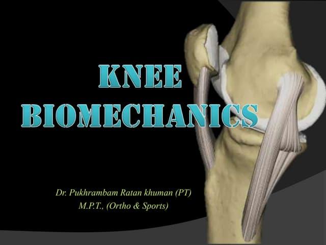 Knee biomechanic