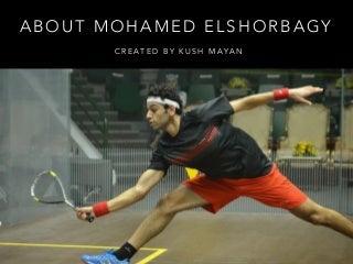 About Mohamed Elshorbagy