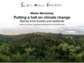 Putting a halt on climate change, stories from forests and wetlands