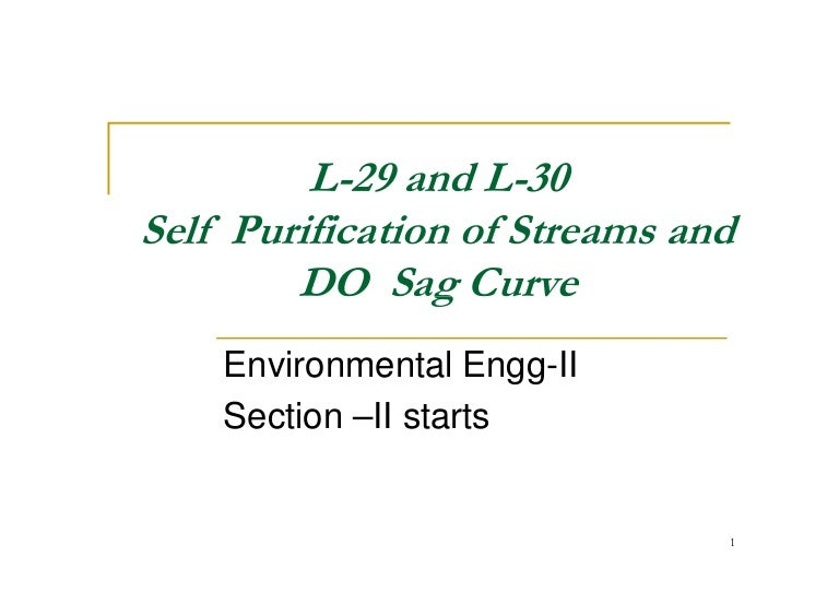 L 29 do sag and self purification of streams