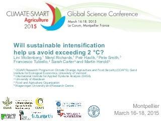 Will sustainable intensification help us avoid exceeding 2 °C?