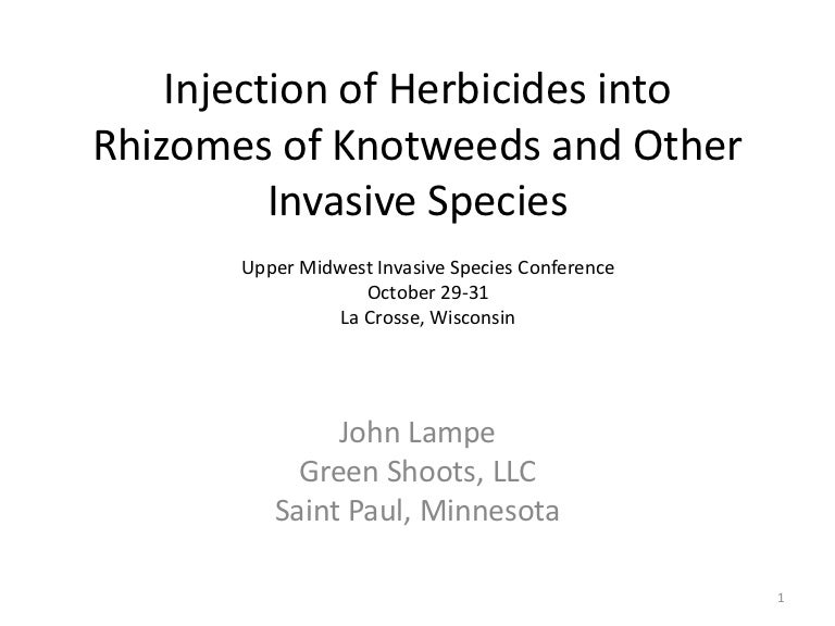Injection of Herbicides into Rhizomes of Knotweeds and Other