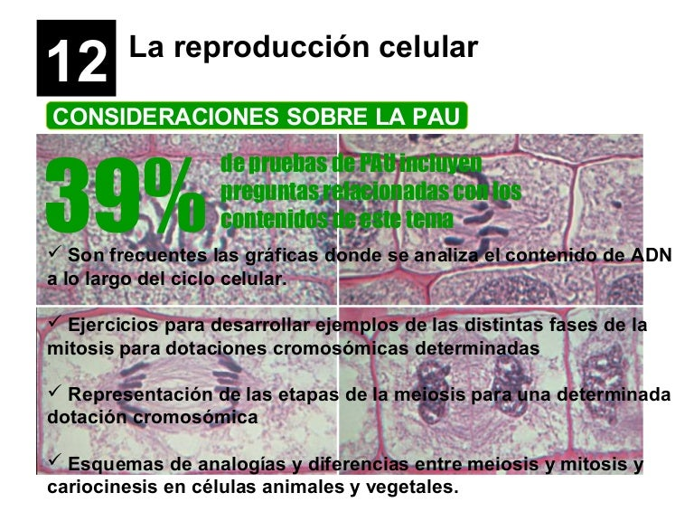 La reproducción celular 2014