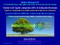 Lattice Energy LLC - Renewable lignin biomass aromatics convert into green radiation-free LENR fuels - Sept 14 2015