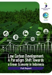 Low Carbon Development: A Paradigm Shift Towards a Green Economy in Indonesia