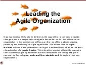 Leading the agile organization