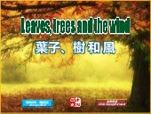 Leaves, trees and the wind (葉子、樹和風)