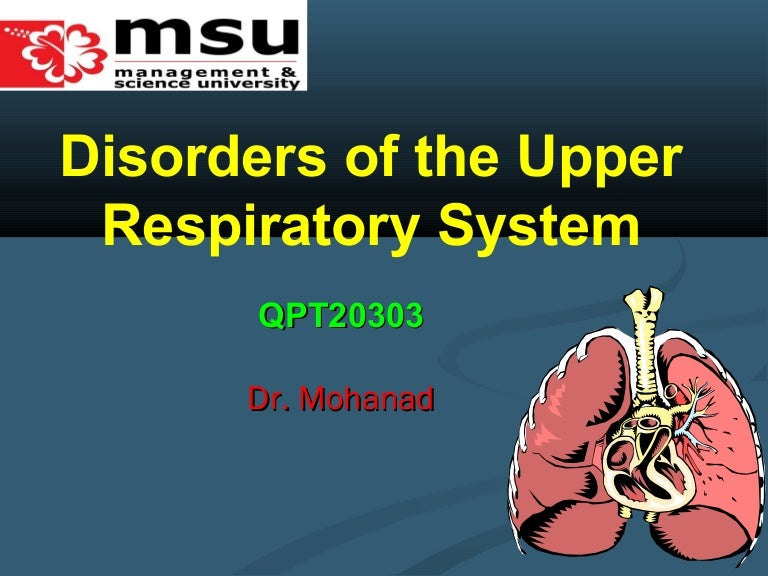 Lecture 2 upper respiratory tract