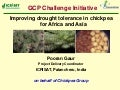 GRM 2011: Improving drought tolerance in chickpeas for Africa and Asia