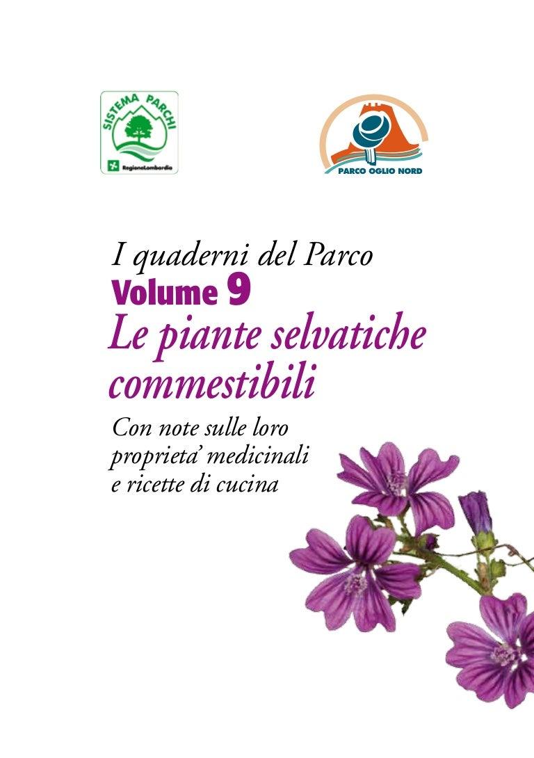 Fiori E Piante Commestibili le piante selvatiche