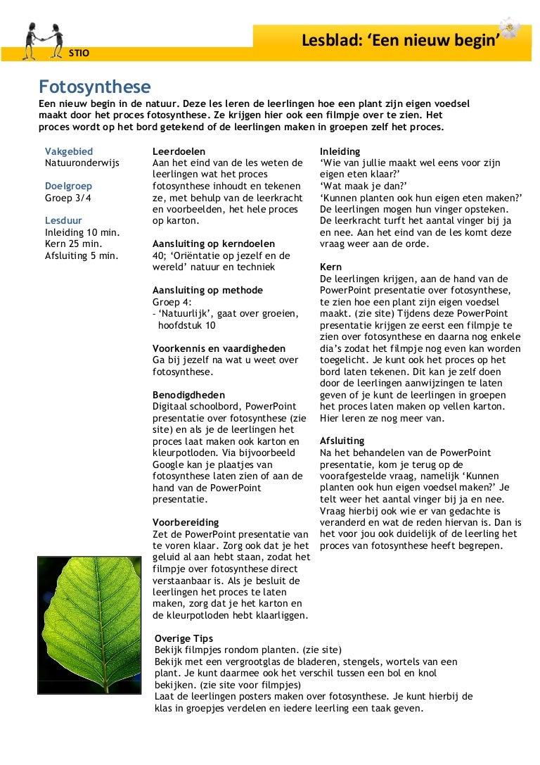 Fonkelnieuw Les Fotosynthese YQ-13