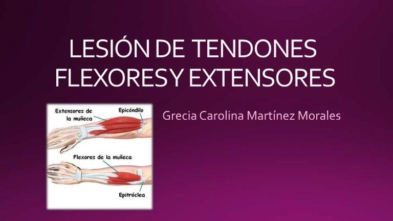 Lesión de tendones flexores y extensores de la mano