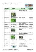 Les plantes mellifères et médicinales