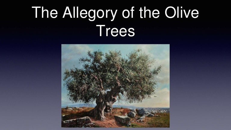 Lesson 13 Allegory Of The Olive Tree