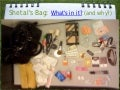 What's in Shetal's Bag? Annotated Bibliographies -- History 12 2012-13