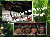Let's Go Take a Walk in the Ecuadorian Rainforest.