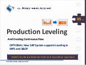 Leveling production sap-support_intro