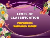 Level of classification