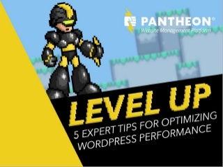 Level Up: 5 Expert Tips for Optimizing WordPress Performance