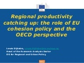 Regional productivity catching up: the role of EU cohesion policy and the OECD perspective - Dijkstra