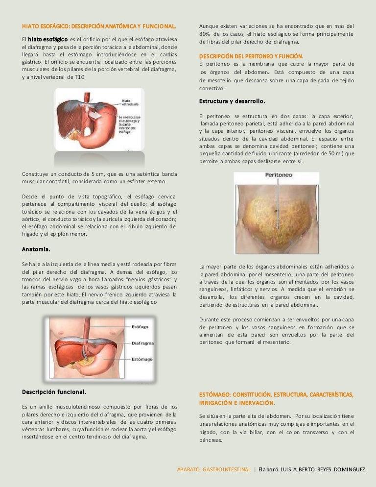 síntomas de diabetes por interposición ileal