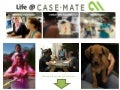 Life at Case-Mate
