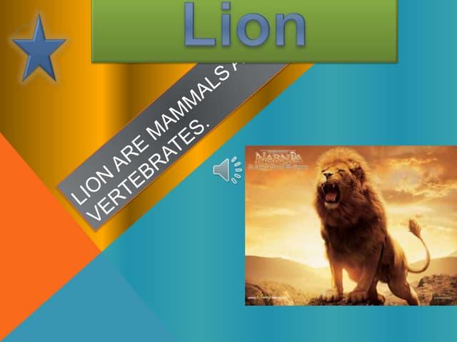 Lion are mammals and vertebrates