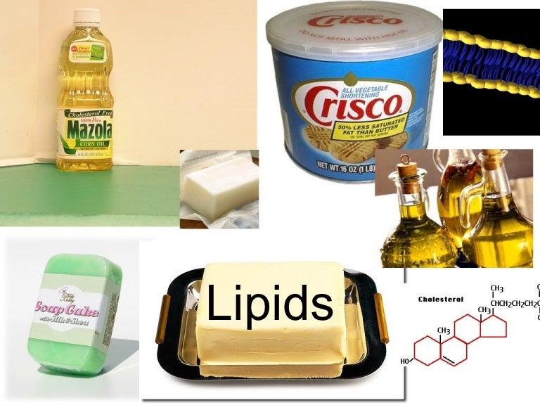 Lipids 121102122619 Phpapp02 Thumbnail 4gcb1351859226