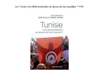 Lire Tunisie. Une démocratisation au-dessus de tout soupçon ? PDF