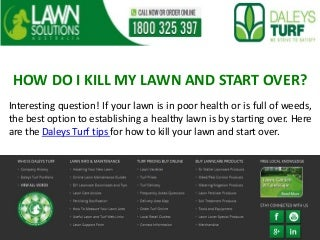HOW DO I KILL MY LAWN AND START OVER