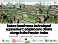 Nature-based vs. technological approaches to adaptation to climate change in the Peruvian Andes
