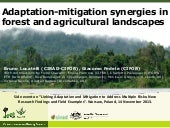 Adaptation-mitigation synergies in forest and agricultural landscapes