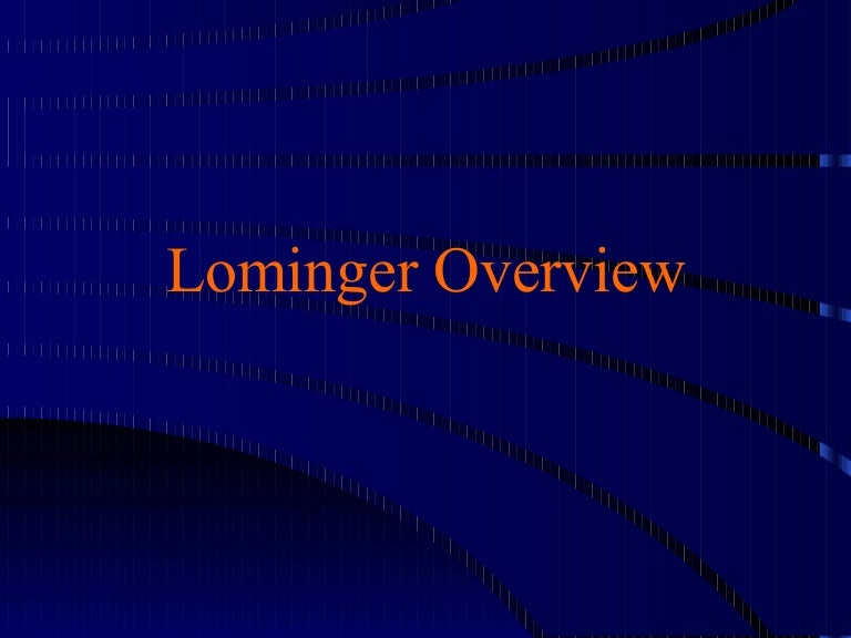 Lominger Overview