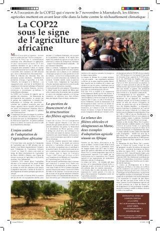 Escort 38 Amiens / Partouse Sexe