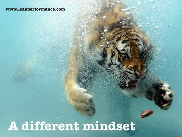 Evolving Goals: IT vs. Product Mindset