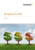 Budgeting for ERP White Paper
