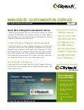 Magento Custom Website Development Services by Citytech Software Private Limited