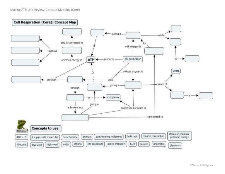 making atp concept mapping review - Concept Map Making