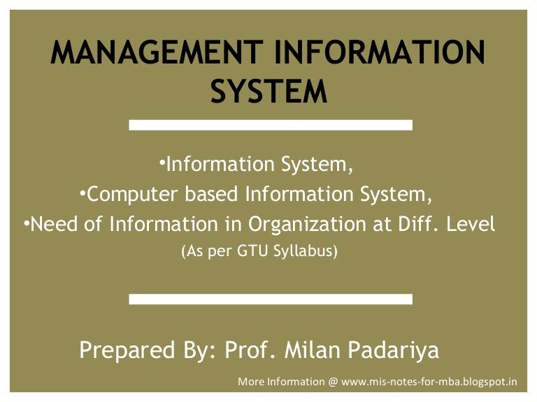 need of management information system pdf