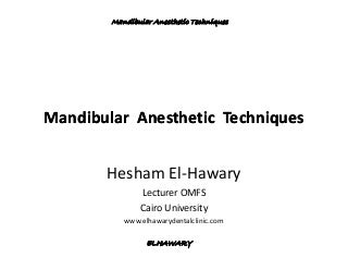 Mandibular anesthetic techniques