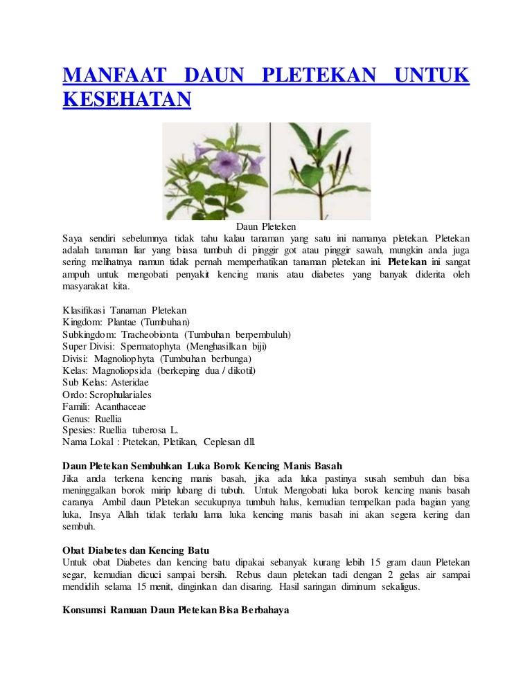 ruellia tuberose diabetes cure