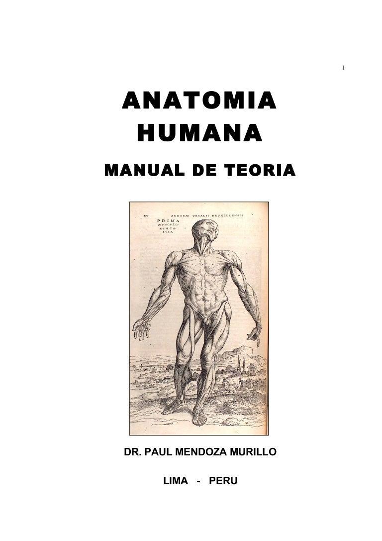manualanatomia-120913104534-phpapp01-thumbnail-4.jpg?cb=1347533291