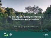 The role of participatory monitoring in forest landscape restoration