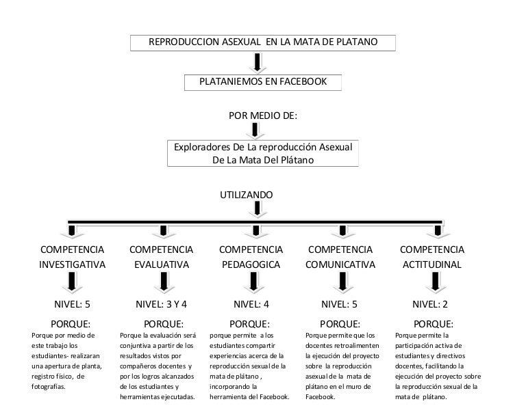 Mapa conceptual sobre reproduccion sexual y asexual